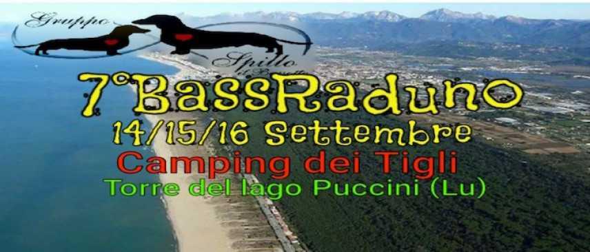 Torre del Lago Puccini, sale l'attesa per il settimo raduno del Gruppo Spillo il Bassotto