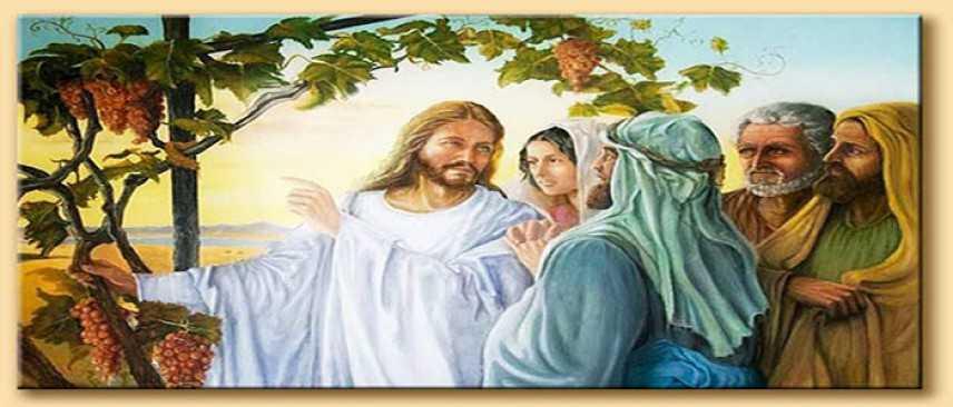 Quinta domenica di Pasqua - Chi rimane in me ed io in lui fa molto frutto