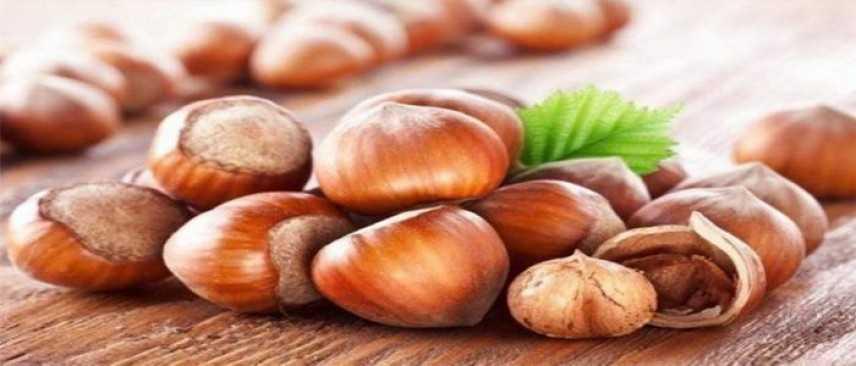 Nutella punta sulla nocciola italiana: 20mila ettari di nuove piantagioni entro il 2025