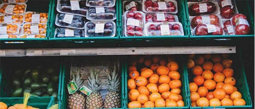 Dai sacchetti biodegradabili alle altre iniziative ecosostenibili nel campo alimentare