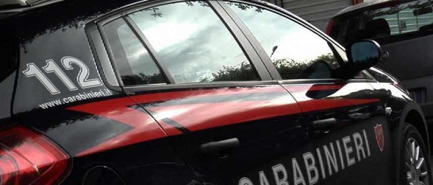 Brescia, bimba di un anno uccisa da pitbull