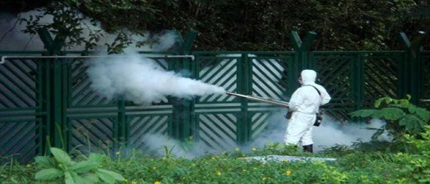 Allerta virus Zika a Rimini, uomo torna contagiato da Cuba