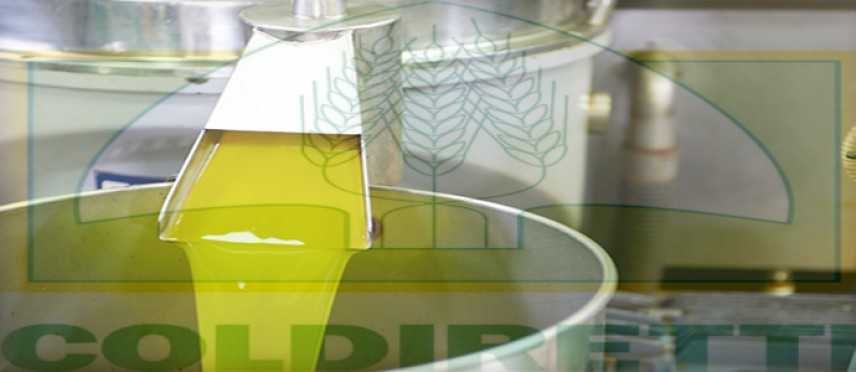 Consumi: Coldiretti, -38% raccolto, olio ai minimi; volano prezzi