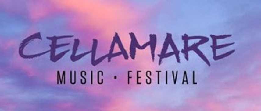 Cellamare Music Festival, Il festival nato per scherzo su Facebook si farà
