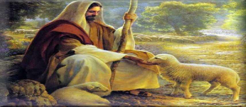 Le mie pecore ascoltano la mia voce IV Domenica Pasqua Anno C
