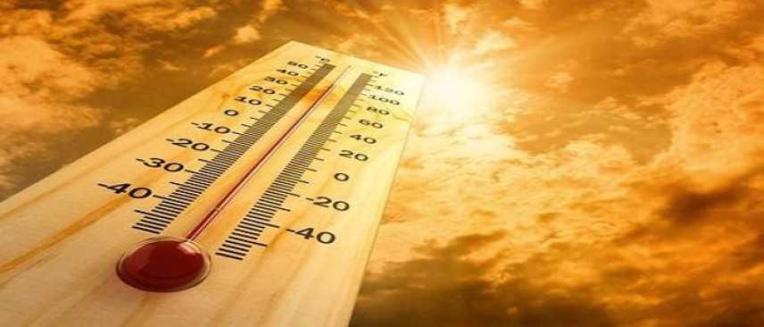 Il 2015 è stato l'anno più caldo, In Italia  lo conferma di Coldiretti