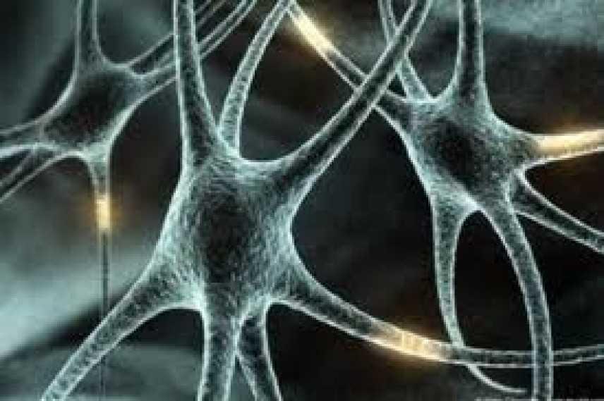 Morbo di Alzheimer: alla ricerca di un metodo rapido e sicuro per la diagnosi precoce