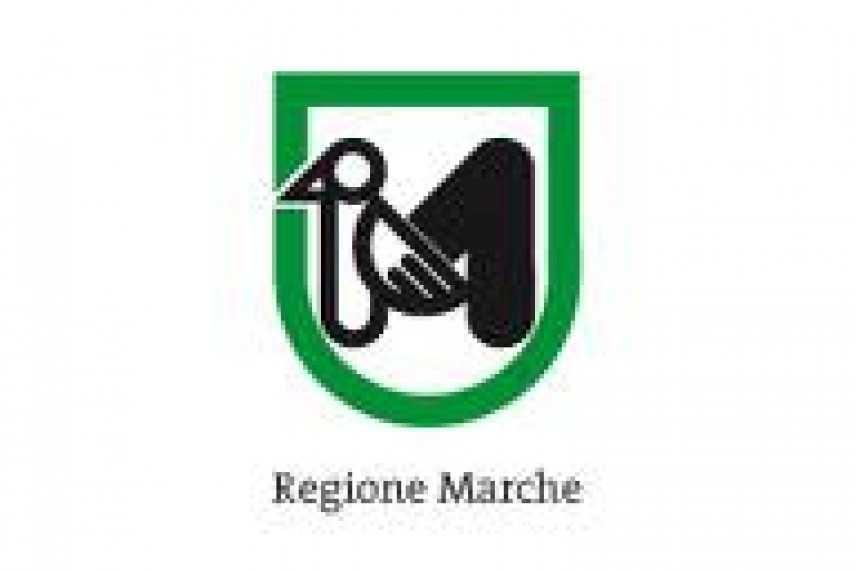 Regione Marche, indetta procedura concorsuale pubblica per dirigente nella Giunta regionale