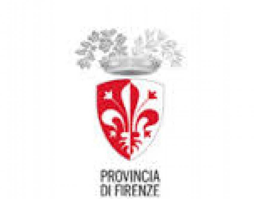 Il Consiglio provinciale di Firenze si aprirà con uno sguardo verso la violenza sulle donne