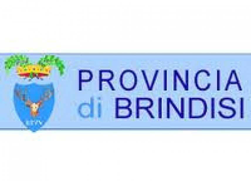 La Provincia di Brindisi organizza un convegno sul Fondo per il Microcredito d'Impresa