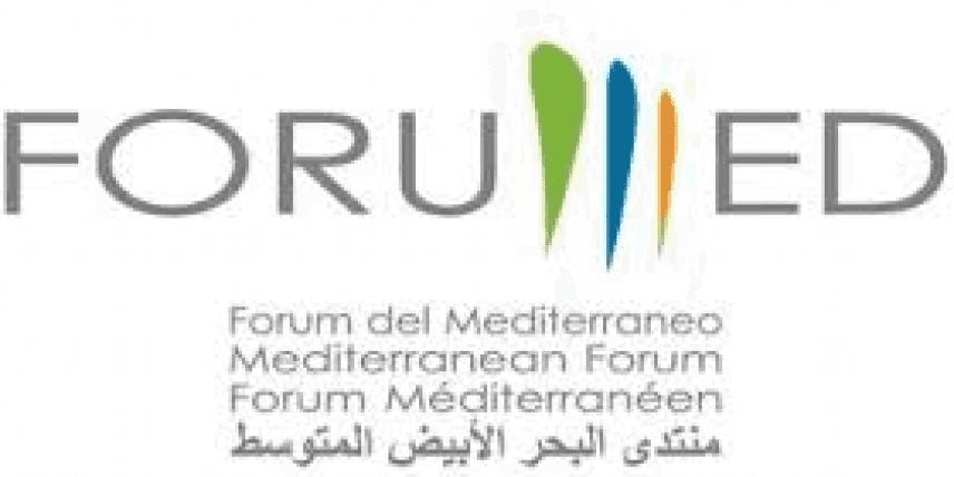 Forumed 2013: nuova formazione nell'area euro-mediterranea