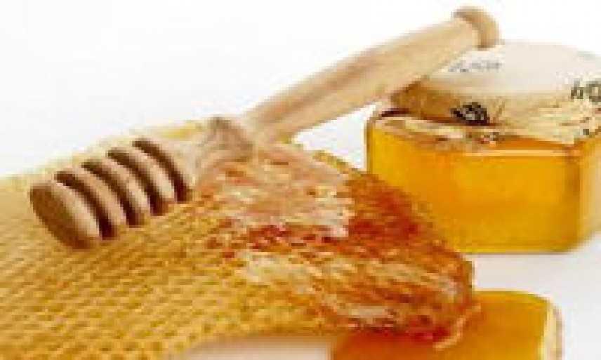 """Concorso nazionale gastronomico """"Il miele in cucina"""""""