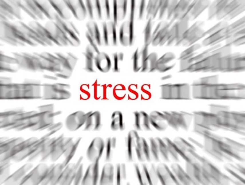 Stress da lavoro correlato, sintomi e trattamento. Ne parliamo con lo psicologo Andrea Zammitti