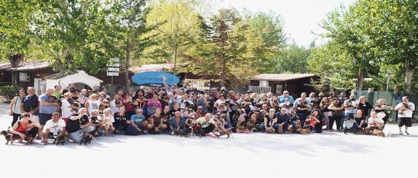 Settimo raduno del Gruppo Spillo il Bassotto, 150 'nanetti' a Torre del Lago Puccini