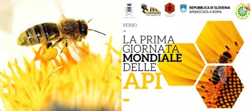 Giornata mondiale delle api, senza di loro niente cioccolata. Onu, a rischio a causa della attività