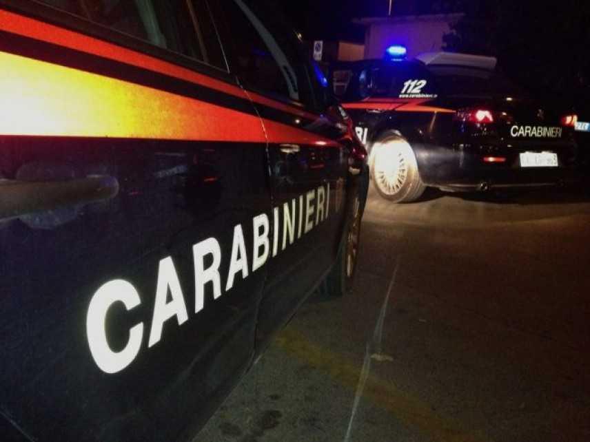 Droga: coltivazioni in area Aspromonte, 20 arresti dei Cc