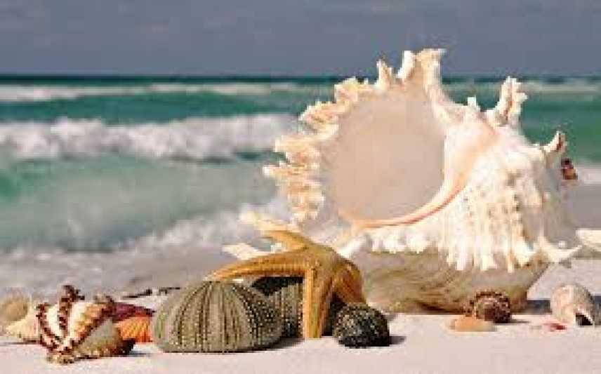 Spiagge ancora depredate in Sardegna